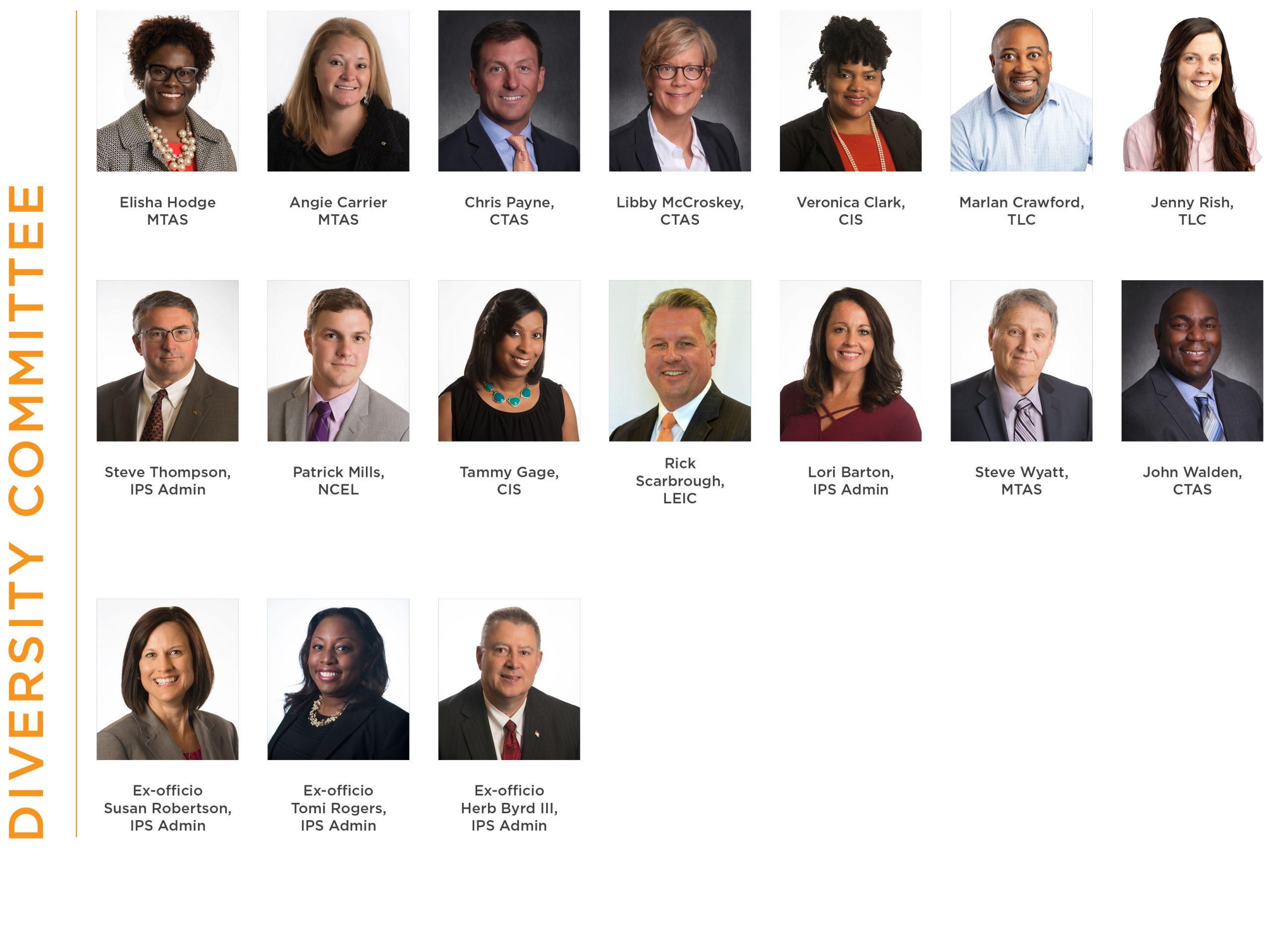 IPS Diversity Committee